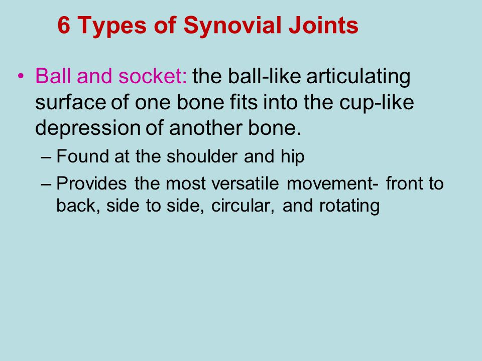 6 Types of Synovial Joints Ball and socket: the ball-like articulating surface of one bone fits into the cup-like depression of another bone. –Found a