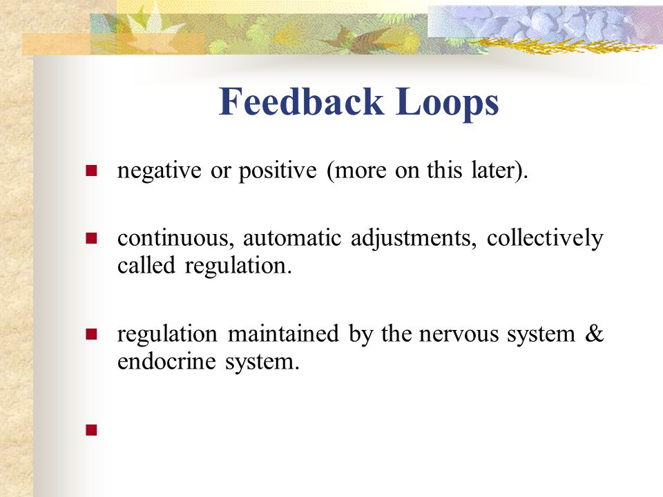 Feedback Loops negative or positive (more on this later). continuous, automatic adjustments, collectively called regulation. regulation maintained by