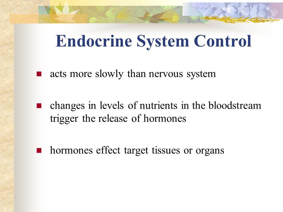 Endocrine System Control acts more slowly than nervous system changes in levels of nutrients in the bloodstream trigger the release of hormones hormones effect target tissues or organs