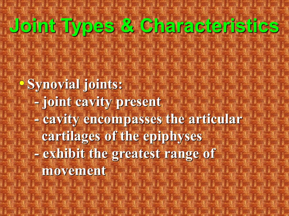 Joint Types & Characteristics Synovial joints: - joint cavity present - cavity encompasses the articular cartilages of the epiphyses - exhibit the greatest range of movement