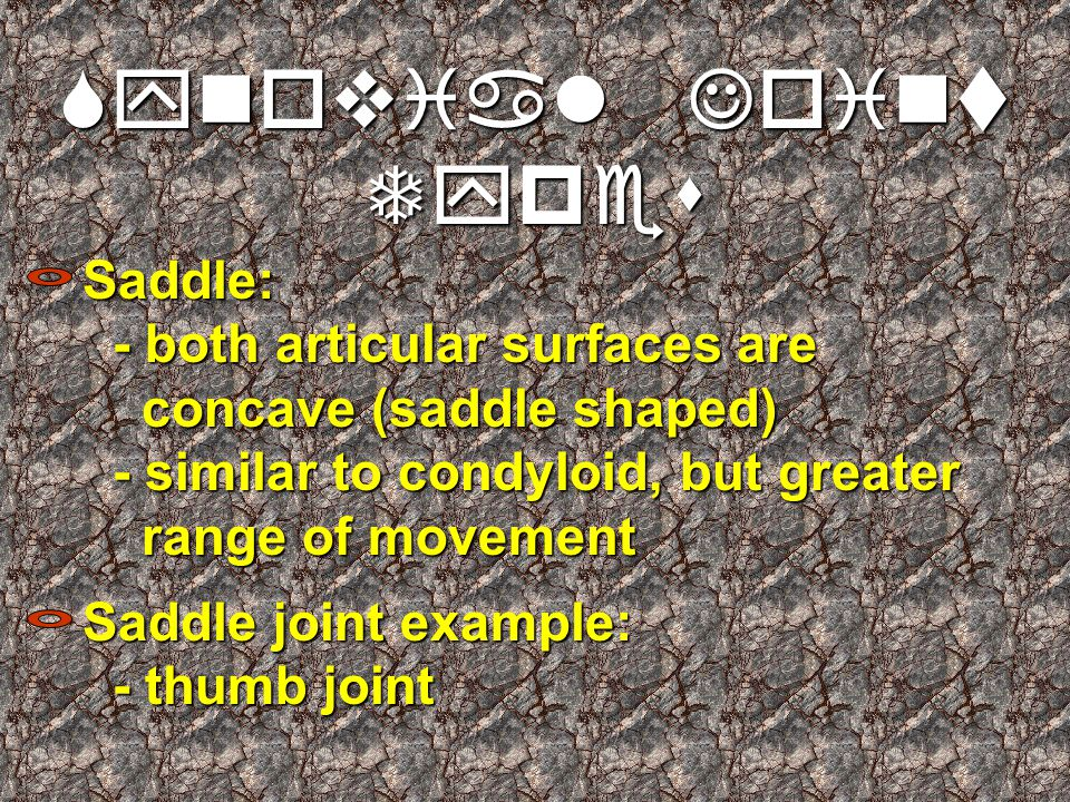 Synovial Joint Types Saddle: - both articular surfaces are concave (saddle shaped) - similar to condyloid, but greater range of movement Saddle joint example: - thumb joint