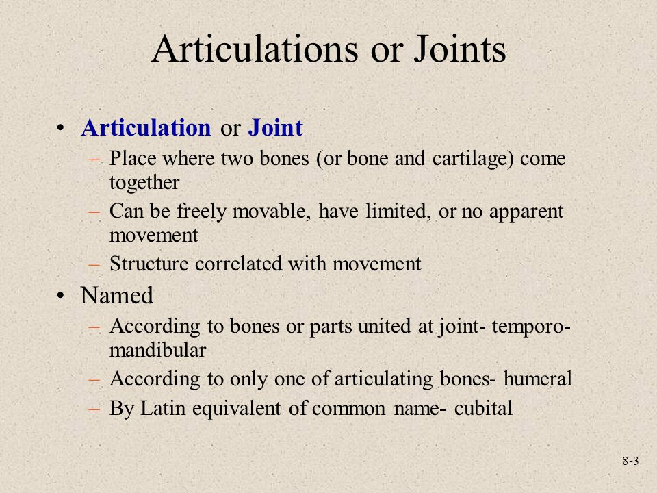 8-3 Articulations or Joints Articulation or Joint –Place where two bones (or bone and cartilage) come together –Can be freely movable, have limited, o