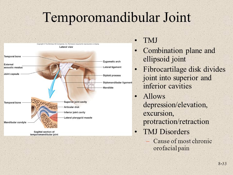 8-33 Temporomandibular Joint TMJ Combination plane and ellipsoid joint Fibrocartilage disk divides joint into superior and inferior cavities Allows depression/elevation, excursion, protraction/retraction TMJ Disorders –Cause of most chronic orofacial pain