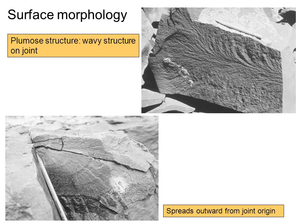 Surface morphology Plumose structure: wavy structure on joint Spreads outward from joint origin