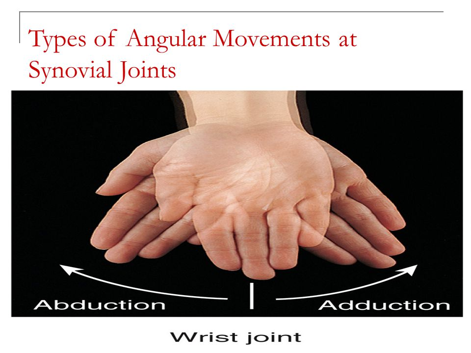 Copyright 2010, John Wiley & Sons, Inc. Types of Angular Movements at Synovial Joints