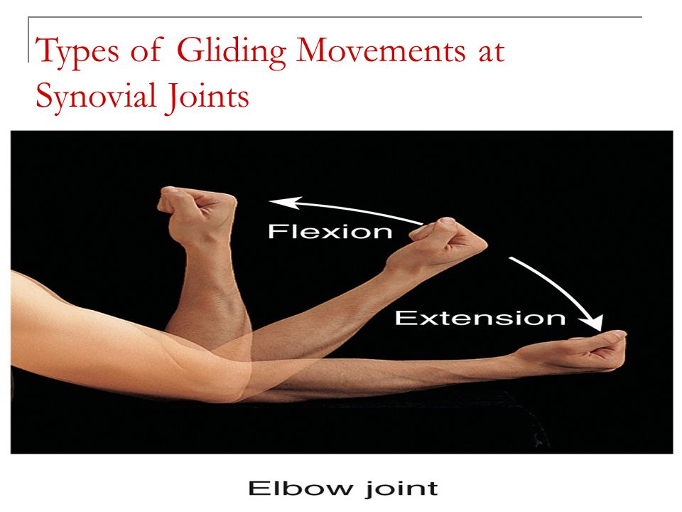 Copyright 2010, John Wiley & Sons, Inc. Types of Rotation Movements at Synovial Joints