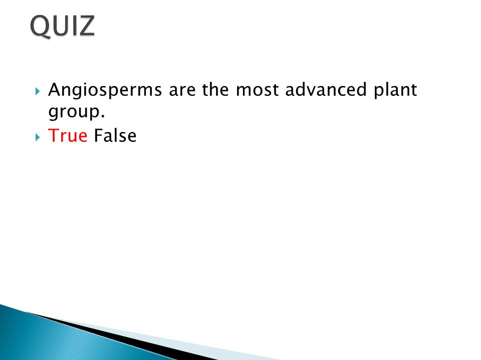  Angiosperms are the most advanced plant group.  True False