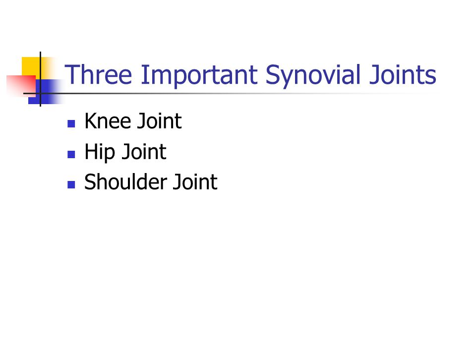 Three Important Synovial Joints Knee Joint Hip Joint Shoulder Joint