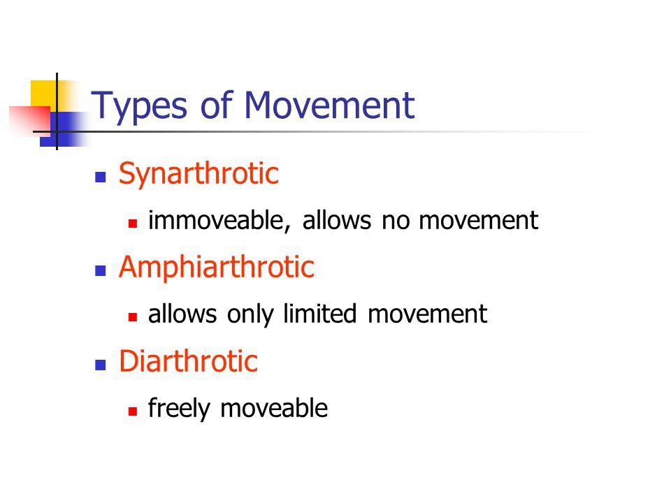 Types of Movement Synarthrotic immoveable, allows no movement Amphiarthrotic allows only limited movement Diarthrotic freely moveable
