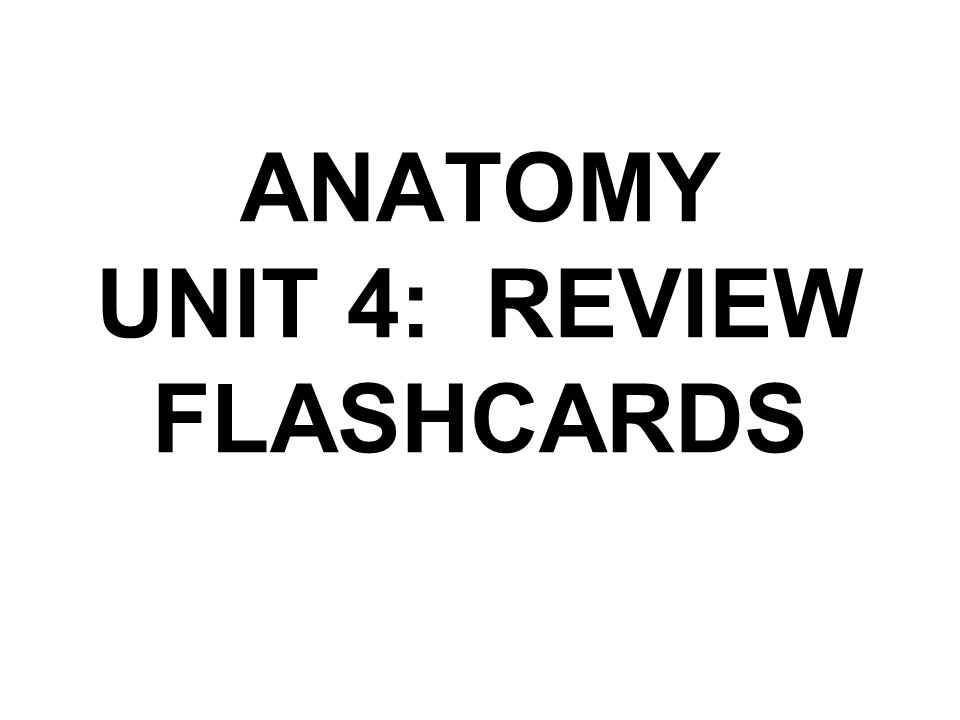 ANATOMY UNIT 4: REVIEW FLASHCARDS