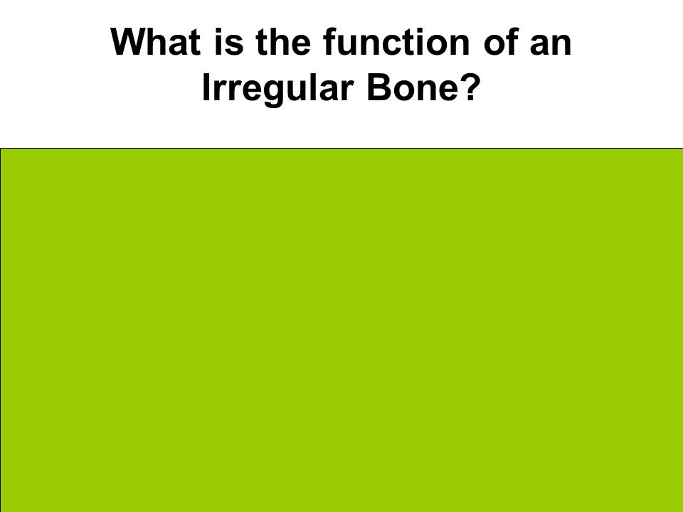 What is the function of an Irregular Bone.