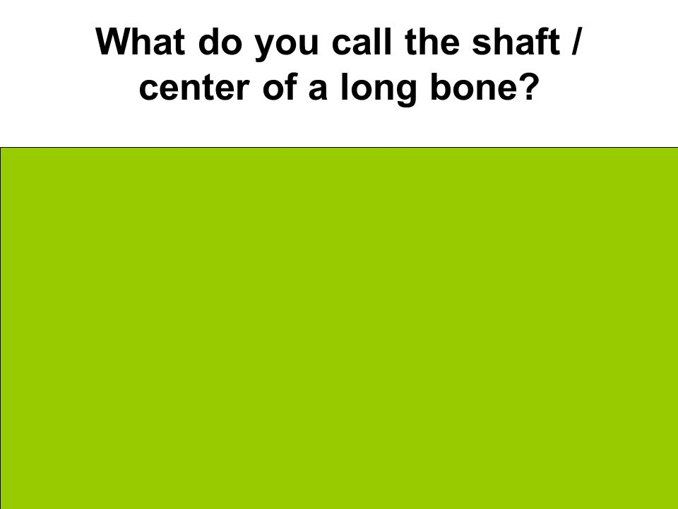 What do you call the shaft / center of a long bone Diaphysis