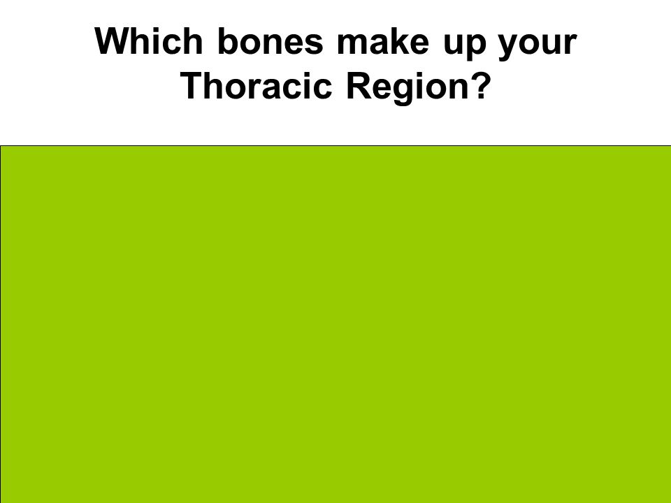 Which bones make up your Thoracic Region. Ribs… Which connect to the vertebra in back….