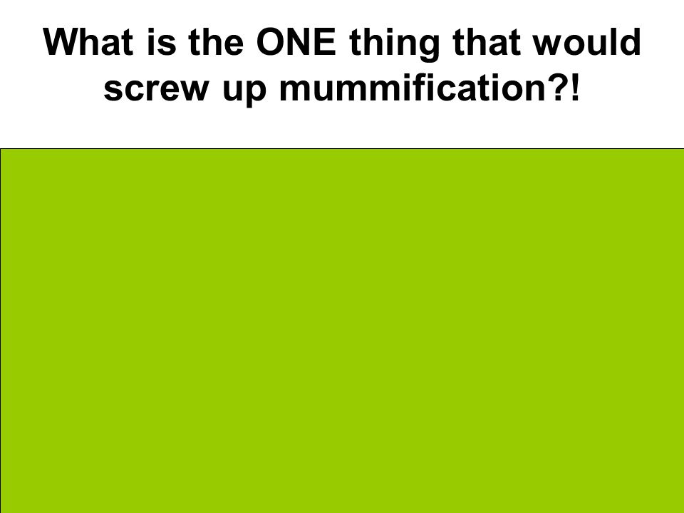 What is the ONE thing that would screw up mummification ! BACTERIA!!!