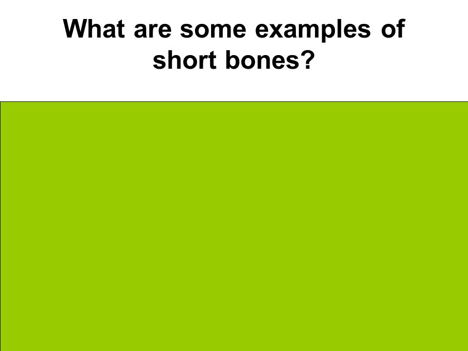What are some examples of short bones Wrist Ankle