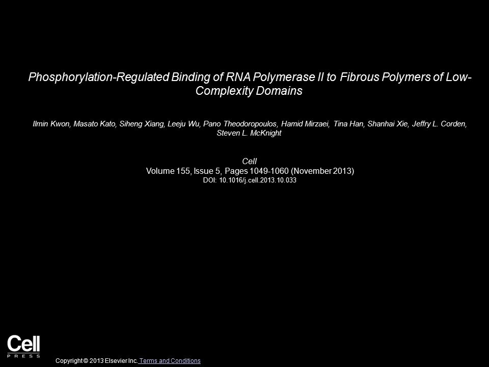 Phosphorylation-Regulated Binding of RNA Polymerase II to Fibrous Polymers of Low- Complexity Domains Ilmin Kwon, Masato Kato, Siheng Xiang, Leeju Wu, Pano Theodoropoulos, Hamid Mirzaei, Tina Han, Shanhai Xie, Jeffry L.