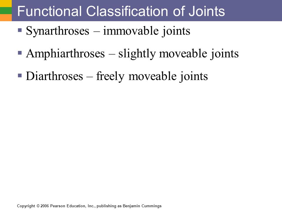 Copyright © 2006 Pearson Education, Inc., publishing as Benjamin Cummings Functional Classification of Joints  Synarthroses – immovable joints  Amphiarthroses – slightly moveable joints  Diarthroses – freely moveable joints