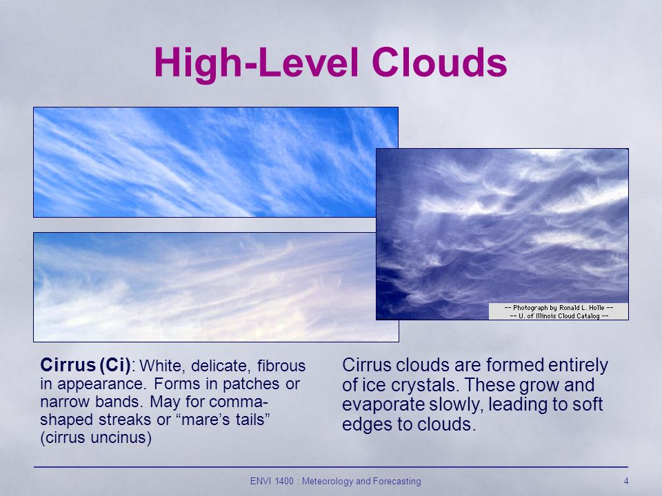 ENVI 1400 : Meteorology and Forecasting25 Nimbostratus (Ns) : Dark grey, featureless, thick layer of cloud.