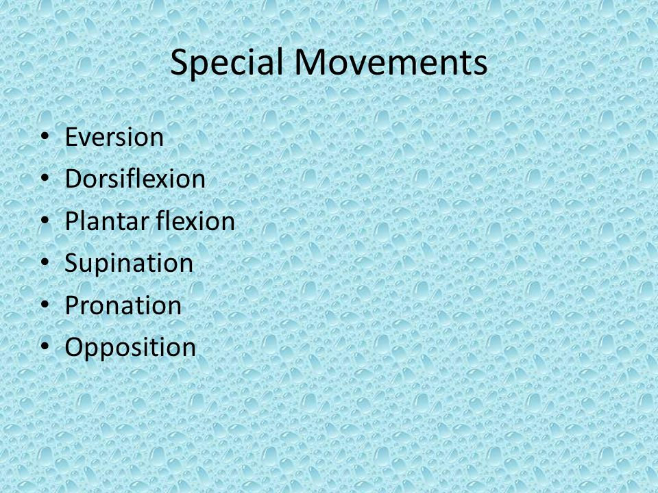 Special Movements Eversion Dorsiflexion Plantar flexion Supination Pronation Opposition