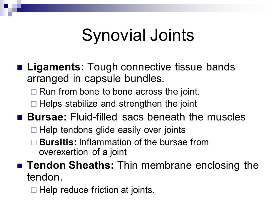 Synovial Joints Ligaments: Tough connective tissue bands arranged in capsule bundles.  Run from bone to bone across the joint.  Helps stabilize and