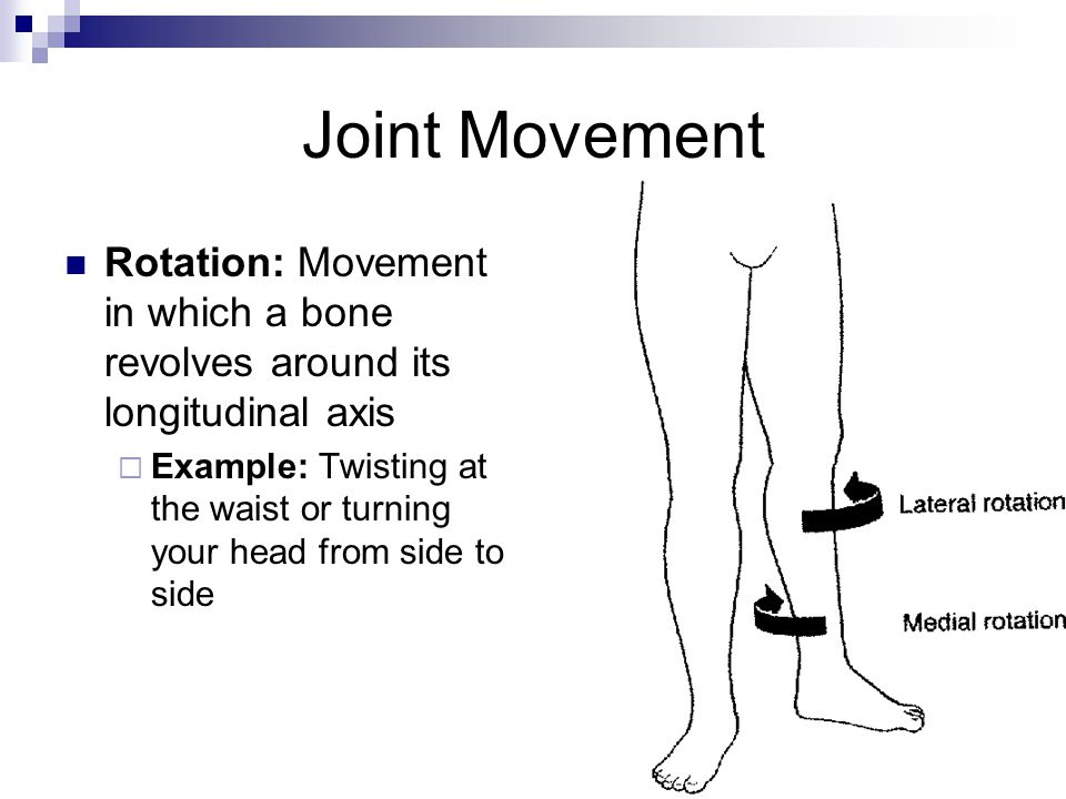 Joint Movement Rotation: Movement in which a bone revolves around its longitudinal axis  Example: Twisting at the waist or turning your head from sid