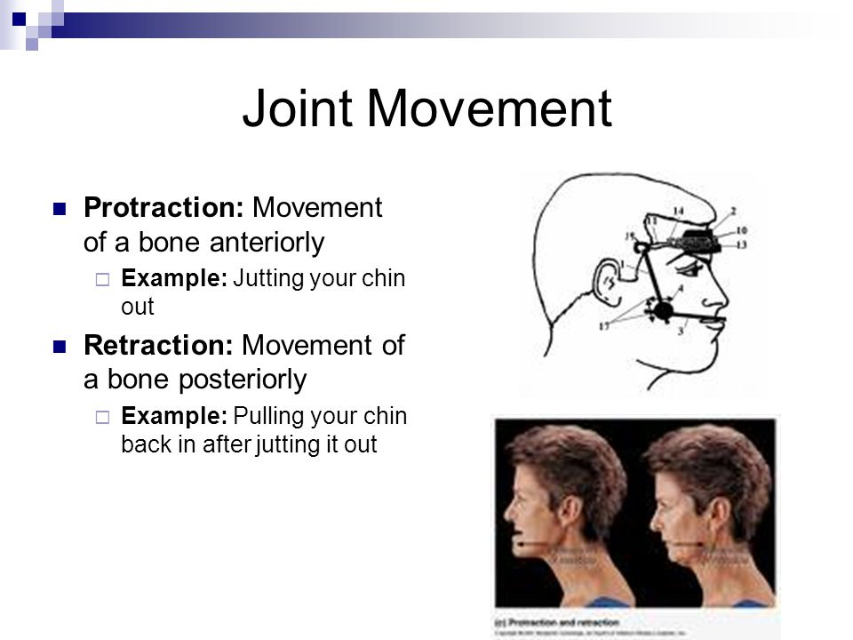Joint Movement Protraction: Movement of a bone anteriorly  Example: Jutting your chin out Retraction: Movement of a bone posteriorly  Example: Pulli