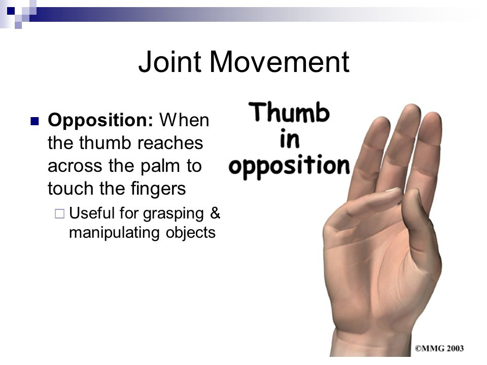 Joint Movement Opposition: When the thumb reaches across the palm to touch the fingers  Useful for grasping & manipulating objects