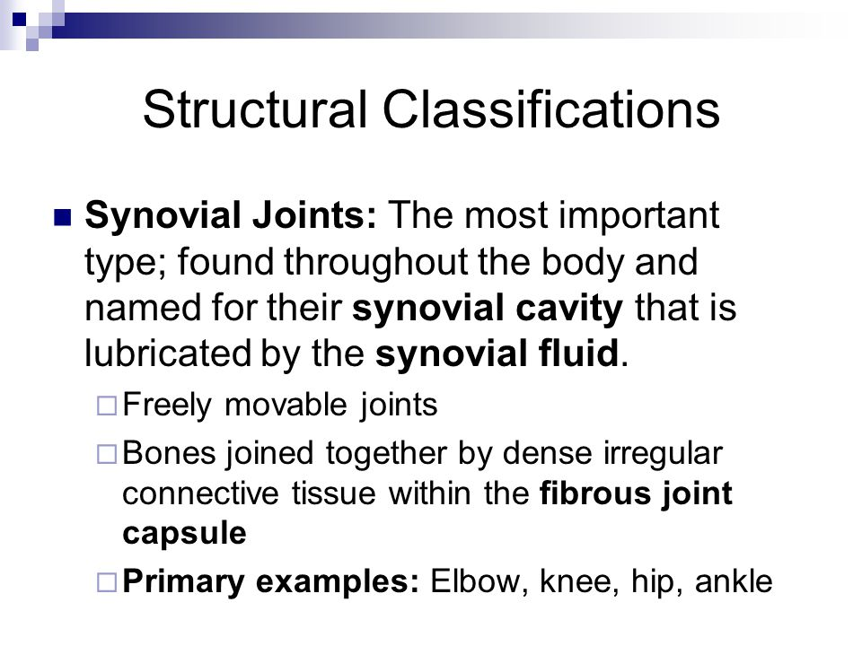 Structural Classifications Synovial Joints: The most important type; found throughout the body and named for their synovial cavity that is lubricated