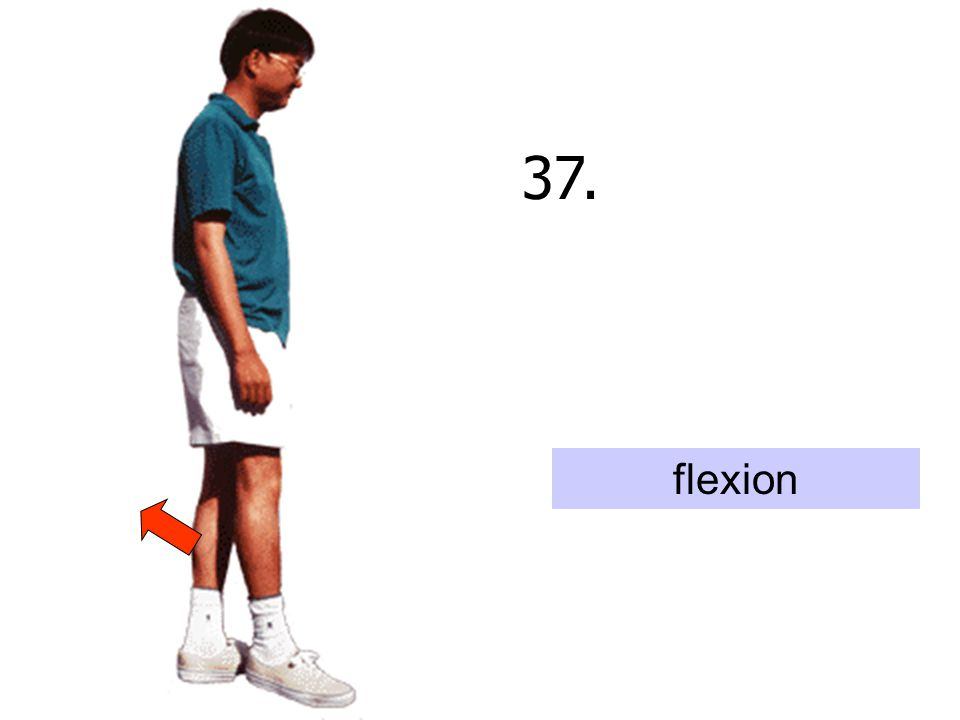 protraction 38.