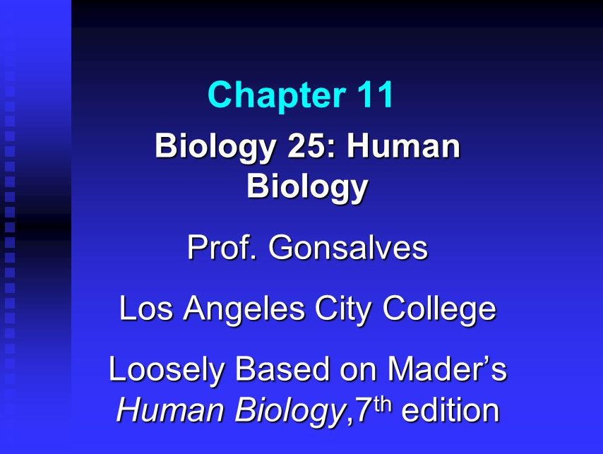 Chapter 11 Biology 25: Human Biology Prof.
