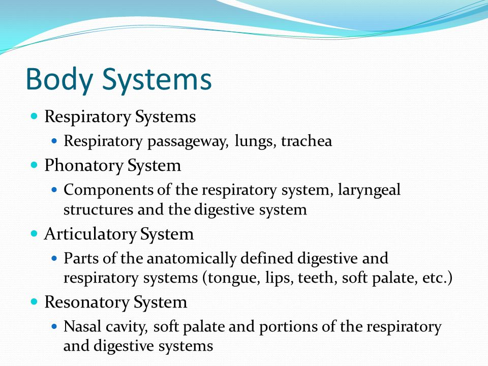 Body Systems Respiratory Systems Respiratory passageway, lungs, trachea Phonatory System Components of the respiratory system, laryngeal structures and the digestive system Articulatory System Parts of the anatomically defined digestive and respiratory systems (tongue, lips, teeth, soft palate, etc.) Resonatory System Nasal cavity, soft palate and portions of the respiratory and digestive systems