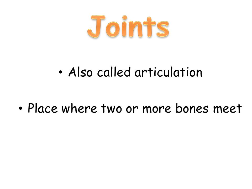 Also called articulation Place where two or more bones meet