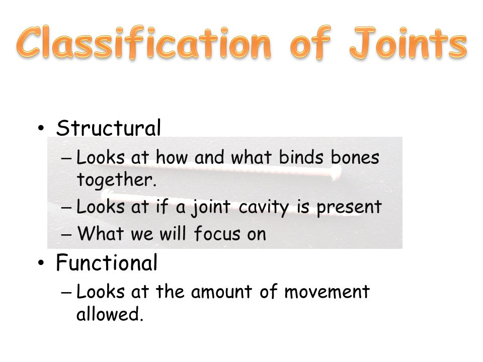 Structural – Looks at how and what binds bones together.