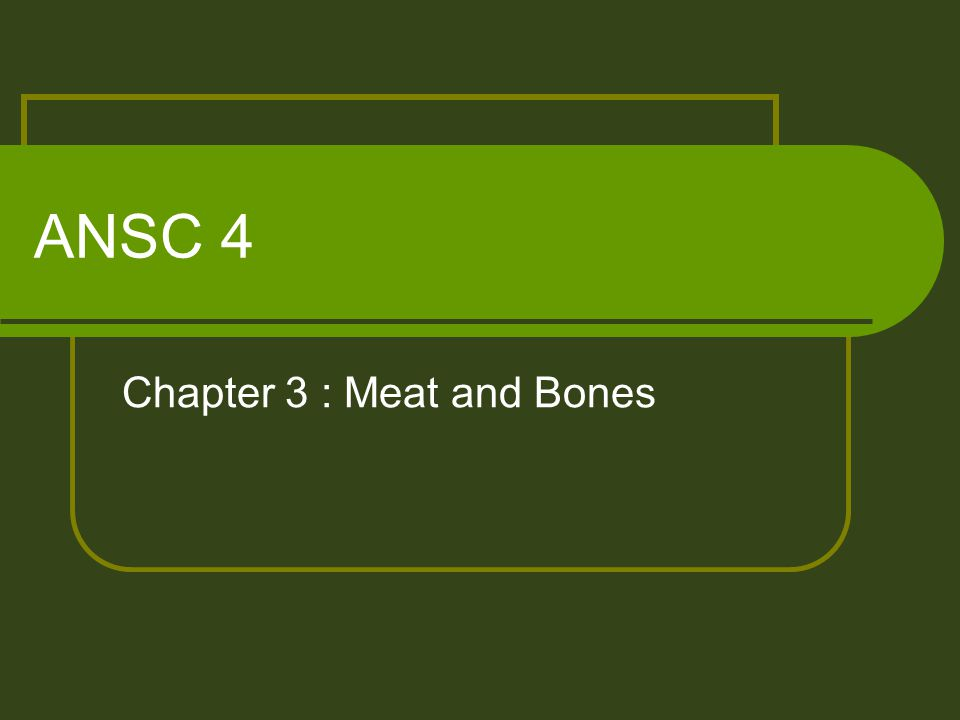 ANSC 4 Chapter 3 : Meat and Bones