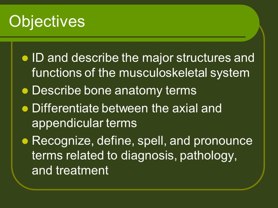 Objectives ID and describe the major structures and functions of the musculoskeletal system Describe bone anatomy terms Differentiate between the axia