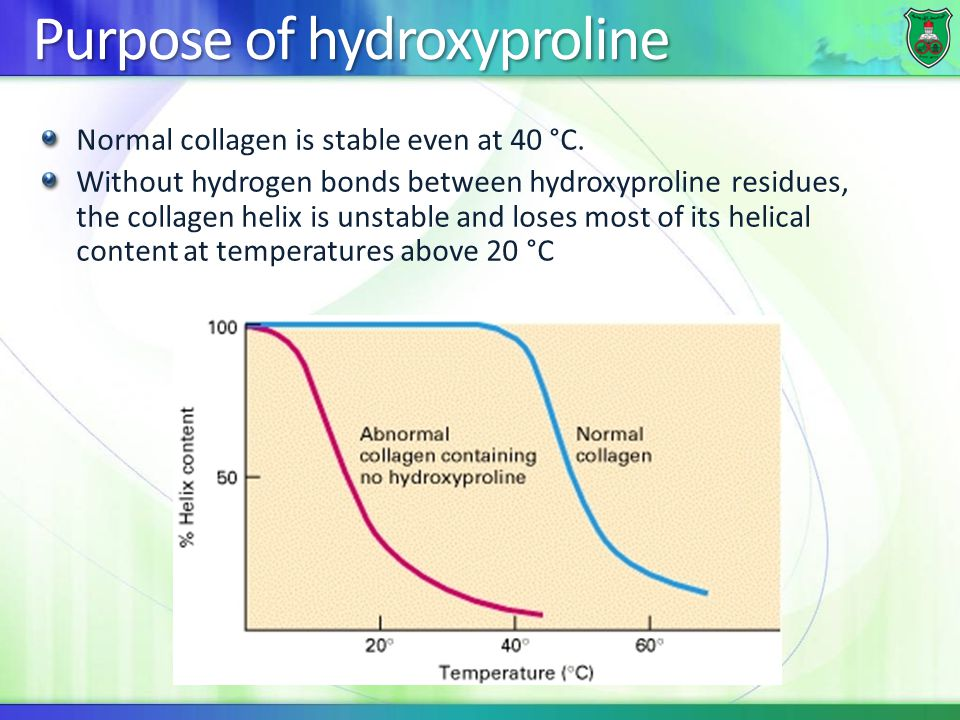 Purpose of hydroxyproline Normal collagen is stable even at 40 °C. Without hydrogen bonds between hydroxyproline residues, the collagen helix is unsta