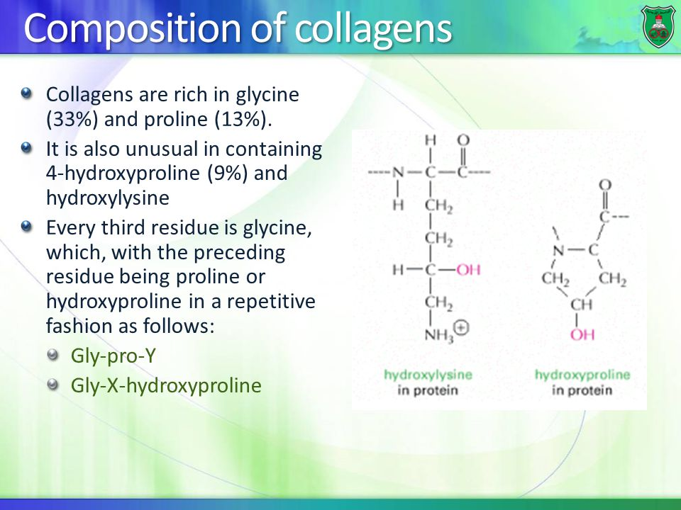 Composition of collagens Collagens are rich in glycine (33%) and proline (13%). It is also unusual in containing 4-hydroxyproline (9%) and hydroxylysi