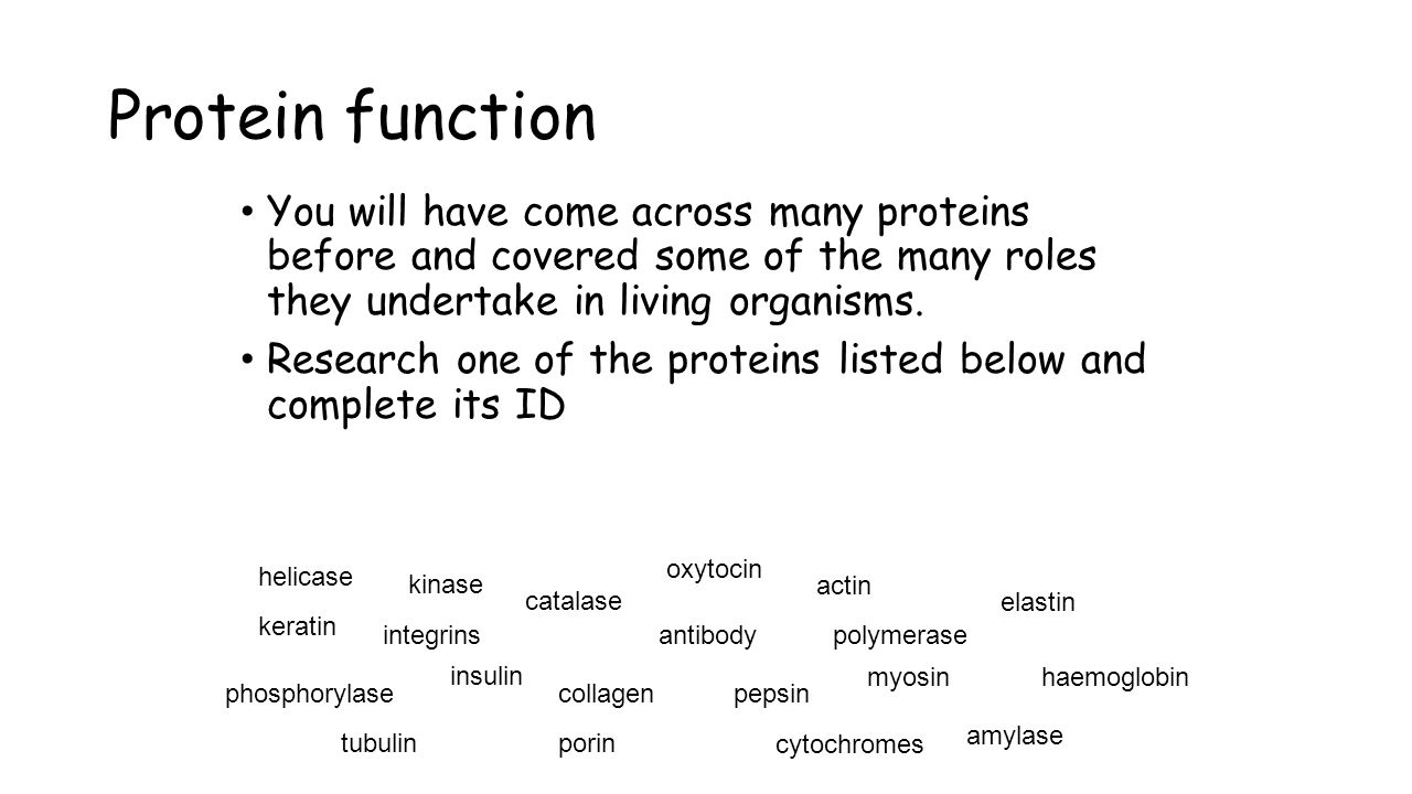Protein function You will have come across many proteins before and covered some of the many roles they undertake in living organisms.