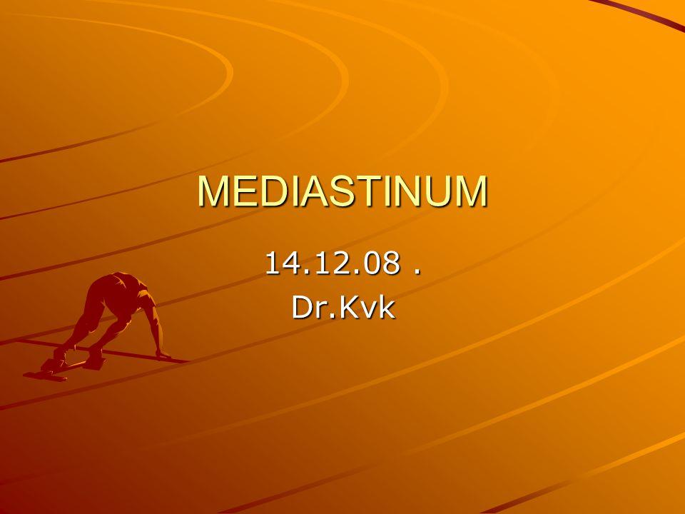 MEDIASTINUM 14.12.08. Dr.Kvk
