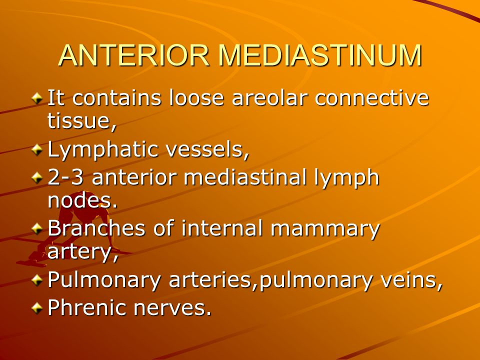 ANTERIOR MEDIASTINUM It contains loose areolar connective tissue, Lymphatic vessels, 2-3 anterior mediastinal lymph nodes. Branches of internal mammar
