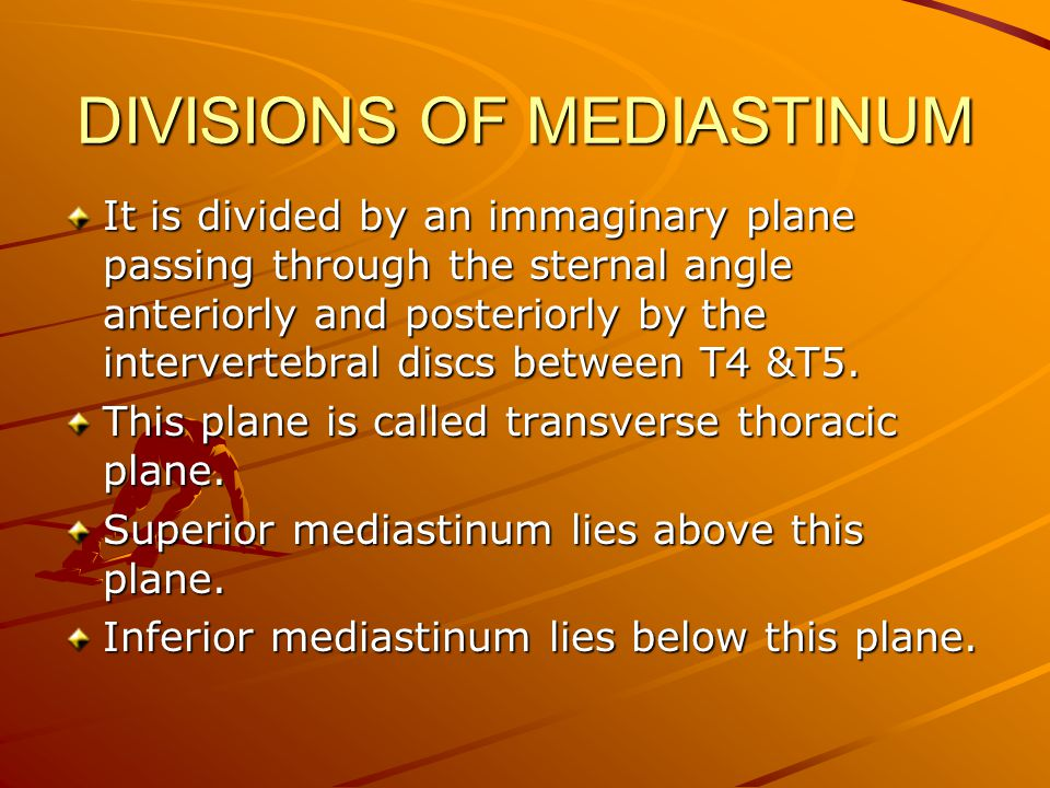 DIVISIONS OF MEDIASTINUM It is divided by an immaginary plane passing through the sternal angle anteriorly and posteriorly by the intervertebral discs between T4 &T5.