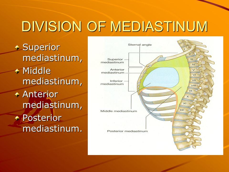 DIVISION OF MEDIASTINUM Superior mediastinum, Middle mediastinum, Anterior mediastinum, Posterior mediastinum.