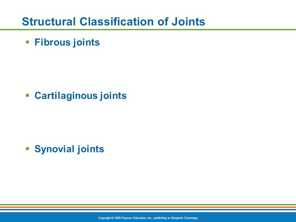 Copyright © 2009 Pearson Education, Inc., publishing as Benjamin Cummings Structural Classification of Joints  Fibrous joints  Cartilaginous joints  Synovial joints