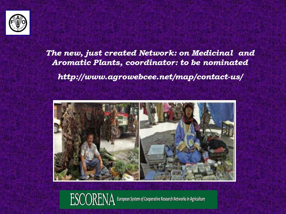 The new, just created Network: on Medicinal and Aromatic Plants, coordinator: to be nominated http://www.agrowebcee.net/map/contact-us/