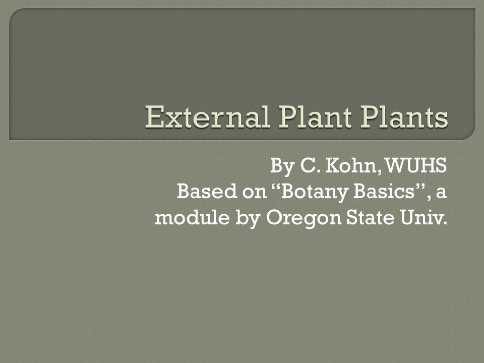  External plant structures such as leaves, stems, roots, flowers, fruits, and seeds are known as plant organs.