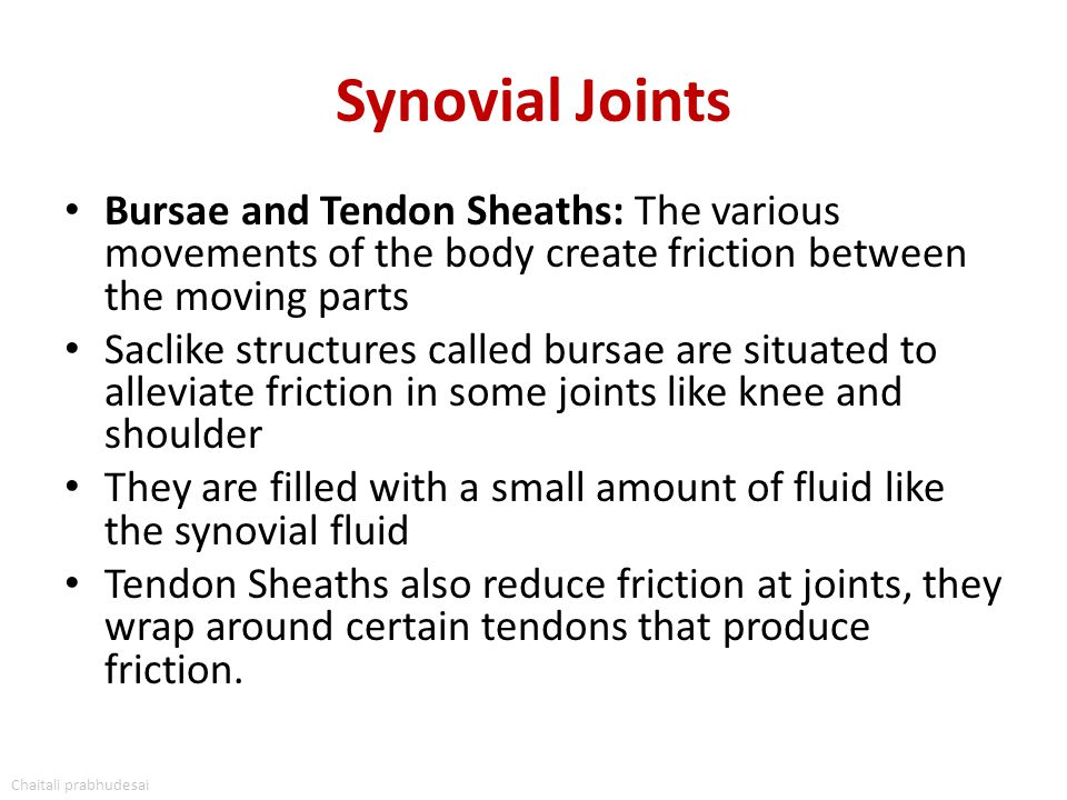Synovial Joints Bursae and Tendon Sheaths: The various movements of the body create friction between the moving parts Saclike structures called bursae