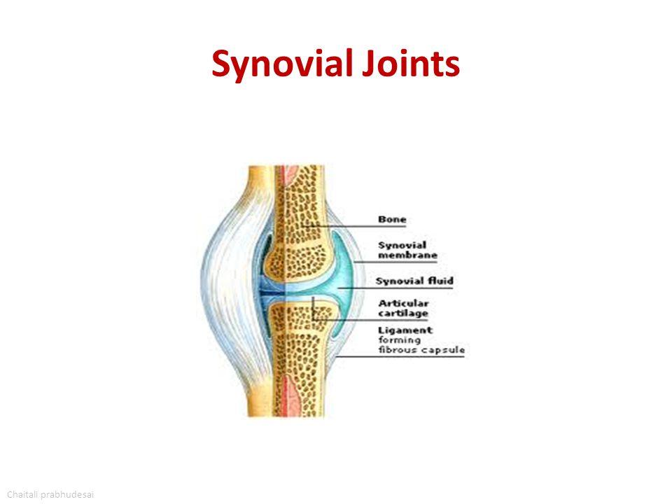 Synovial Joints Chaitali prabhudesai