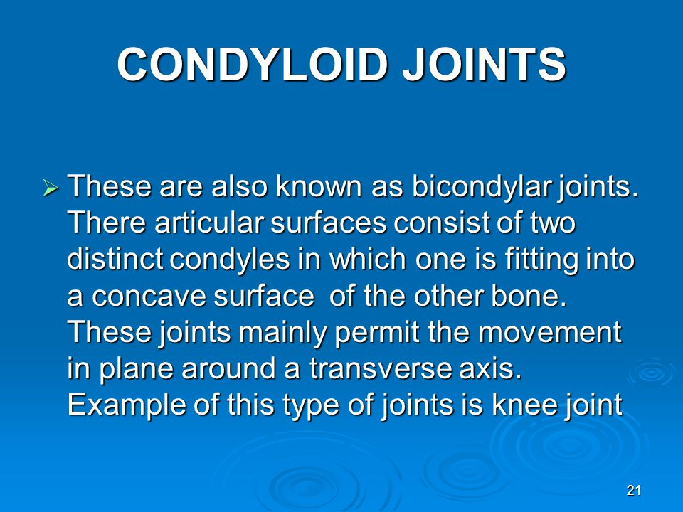 CONDYLOID JOINTS  These are also known as bicondylar joints.