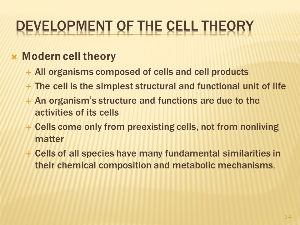 3-45 Live Live And now presenting: THE CELL- LiveLive