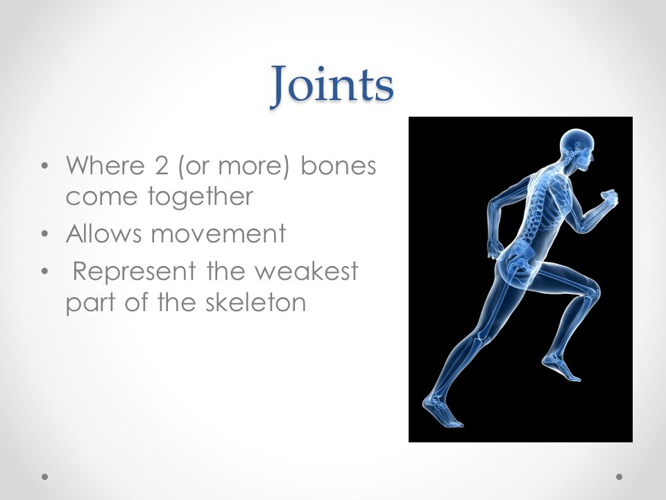Joints Where 2 (or more) bones come together Allows movement Represent the weakest part of the skeleton